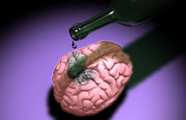 Алкоголь убивает мозговые клетки