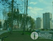 Зеленоград трезвый город